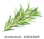 rosemary isolated in closeup | Shutterstock . vector #628265669