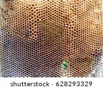 the photo shows beehive honey... | Shutterstock . vector #628293329