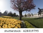 istanbul  turkey   april 26 ... | Shutterstock . vector #628319795