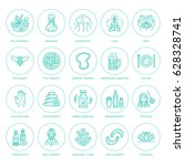 alternative medicine line icons.... | Shutterstock .eps vector #628328741