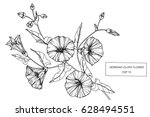 morning glory flowers drawing... | Shutterstock .eps vector #628494551