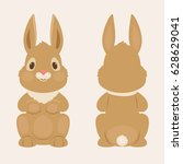 bunny rabbit front and back...   Shutterstock .eps vector #628629041