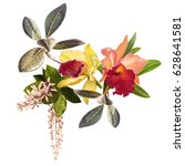 illustration of beautiful... | Shutterstock . vector #628641581