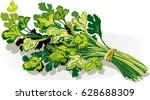 bunch of parsley  is white. | Shutterstock .eps vector #628688309