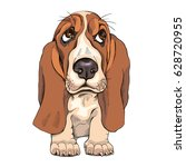 portrait of a puppy basset... | Shutterstock .eps vector #628720955