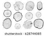 Tree Rings Vector Line Graphic...