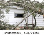 damages from a fallen tree from ... | Shutterstock . vector #628791251