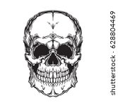 vector illustration of skull....