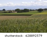 A Rural Landscape In Which A...