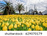 istanbul turkey  april 4 2017... | Shutterstock . vector #629070179