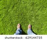 grass  lawn  | Shutterstock . vector #629144735