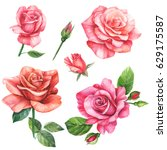 set of elements  roses greeting ... | Shutterstock . vector #629175587