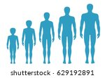 man's body proportions changing ... | Shutterstock .eps vector #629192891