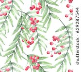 red pepper tree branches hand... | Shutterstock . vector #629287544