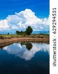 summer landscape thailand...   Shutterstock . vector #629294531