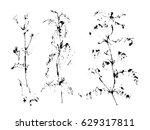 black and white monochrome... | Shutterstock . vector #629317811