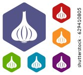 garlic icons set hexagon... | Shutterstock .eps vector #629410805