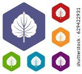 alder leaf icons set hexagon... | Shutterstock .eps vector #629422931