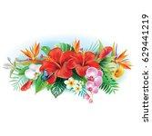 arrangement from tropical...   Shutterstock .eps vector #629441219