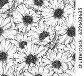hand drawn black white engraved ... | Shutterstock . vector #629608685