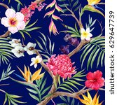 watercolor  exotic tropical... | Shutterstock . vector #629647739