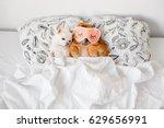 cute  funny red pomeranian...   Shutterstock . vector #629656991