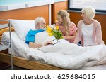 grandmother and granddaughter... | Shutterstock . vector #629684015