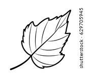 leaf icon. autumn season floral ... | Shutterstock .eps vector #629705945