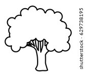tree plant nature isolated icon | Shutterstock .eps vector #629738195