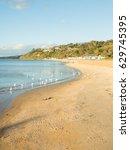 mornington  australia   april 2 ... | Shutterstock . vector #629745395