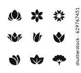 set of black vector flower and... | Shutterstock .eps vector #629767451