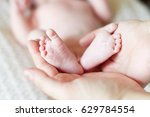 mother holding newborn baby's... | Shutterstock . vector #629784554