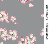 sophisticated beautiful cute... | Shutterstock . vector #629819285