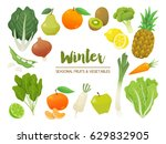 collection of seasonal fruits... | Shutterstock .eps vector #629832905