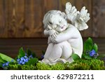 Angel And Spring Flowers On...