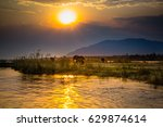 elephants in lower zambezi... | Shutterstock . vector #629874614