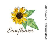 bright and blurred sunflower... | Shutterstock .eps vector #629902184