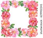 branch of a dogrose  frame... | Shutterstock . vector #629902241