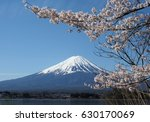 fuji mountain with cherry... | Shutterstock . vector #630170069