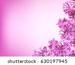 Stock photo purple lilac background with copy space 630197945