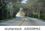 road curve under tiered tree of ... | Shutterstock . vector #630208961