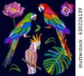 tropical paradise. set of... | Shutterstock .eps vector #630226139