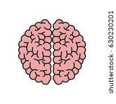 brain organ human intelligence... | Shutterstock .eps vector #630230201