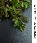 Small photo of Snyt, a wild edible plant. The concept of organic detox food. Aegopodium podagraria