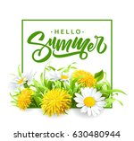 inscription summer on... | Shutterstock .eps vector #630480944