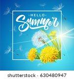 inscription summer on... | Shutterstock .eps vector #630480947