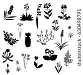 plants set | Shutterstock .eps vector #630498791