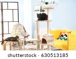 Cute Cats And Cat Tree In...