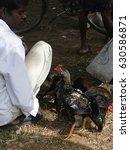 Orissa  India   Nov 11  2009 ...