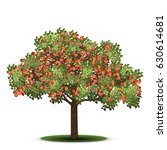 apple tree with red fruits on a ... | Shutterstock .eps vector #630614681